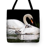 Feather Sun Shade Tote Bag
