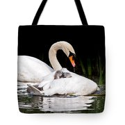 Feather Sunshade Square Tote Bag