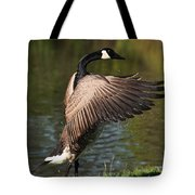 Feather Wash Tote Bag