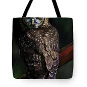 Feathered Beauty Tote Bag