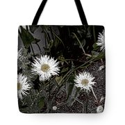 Feathered Daisy  Tote Bag