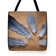 Feathers And Old Letter Tote Bag