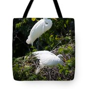 Feathers In A Twist Tote Bag