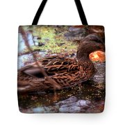 Feathers In Autumn Tote Bag