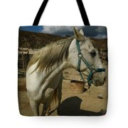 Featured Cute Friend In The Mountain Spain  Tote Bag