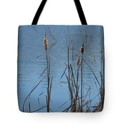February Cattails Tote Bag