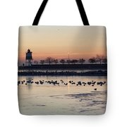 February Navy Pier Chicago Illinois Tote Bag