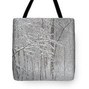 February Snow Tote Bag