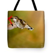 Feeding Anna's Hummingbird Tote Bag