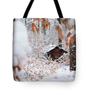Feeding Site In The Forest In Winter  Tote Bag