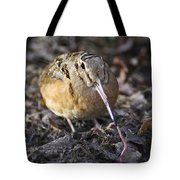 Feeding Woodcock Tote Bag