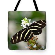 Feeding Zebra Butterfly Tote Bag
