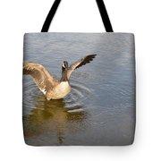 Feel Of Freedom Tote Bag