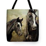 Feldspar And Ohanzee  - Pryor Mustangs Tote Bag by Belinda Greb
