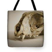 Felis Catus Tote Bag