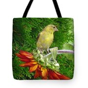 Female American Goldfinch Tote Bag