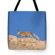 female and young Nubian Ibex Tote Bag