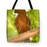 Female Andean Cock-of-the-rock Tote Bag