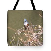 Female Belted Kingfisher Tote Bag