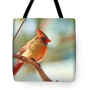 Female Cardinal - Digital Paint IIi Tote Bag