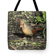 Female Cardinal Tote Bag