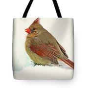 Female Cardinal In Winter II Tote Bag