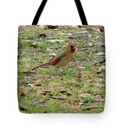 Female Cardinal Tote Bag