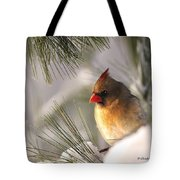 Female Cardinal Nestled In Snow Tote Bag