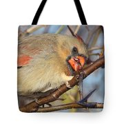 Thorns And Berries - Cardinal Tote Bag