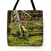 Female Gold Finch Drinking Tote Bag