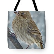 Female House Finch In Snow 1 Tote Bag
