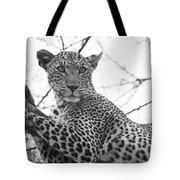 Female Leopard Tote Bag