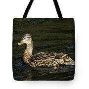 Female Mallard And Duckling Tote Bag