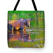 Female Moose Near Airport In Chicken-alaska   Tote Bag