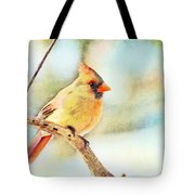 Female Northern Cardinal - Digital Paint I Tote Bag