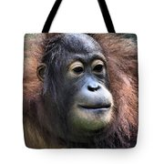 Female Orangutan Borneo Tote Bag