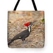 Female Pileated Woodpecker Tote Bag