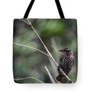 Female Red-wing Tote Bag