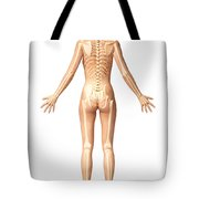 Female Standing, With Skeletal Bones Tote Bag