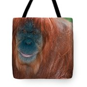 Female Sumatran Orangutan Tote Bag