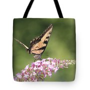 Female Tiger Butterly-1-featured In Macro-comfortable Art And Newbies Groups Tote Bag