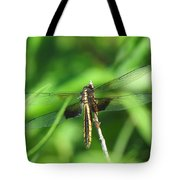 Female Widow Skimmer Tote Bag