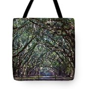 Fence And Wormsloe In Savannah  Tote Bag