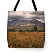 Fence View Tote Bag