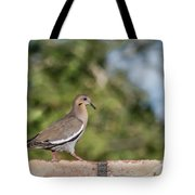 Fence Walker Tote Bag
