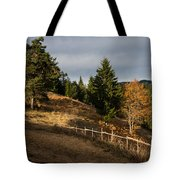 Fenced In Warm Autumn Light Tote Bag