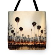 Fenholloway River Florida Tote Bag