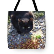 Feral Learning Trust Tote Bag