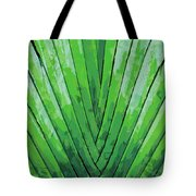 Fern - Color Marker Tote Bag
