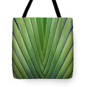 Fern - Colored Photo 1 Tote Bag
